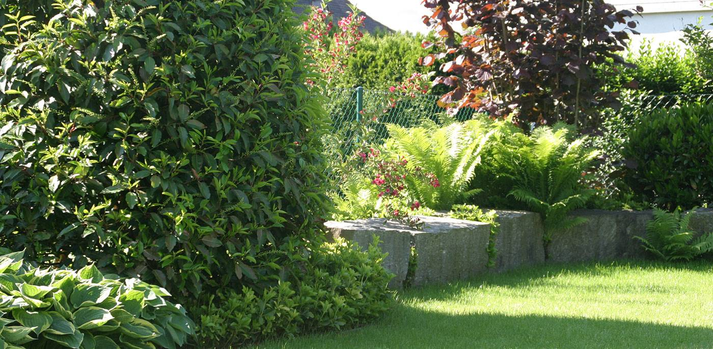 Gartenpflege Privatgarten